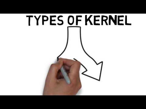 What is Kernel in Operating System Explained with its Types