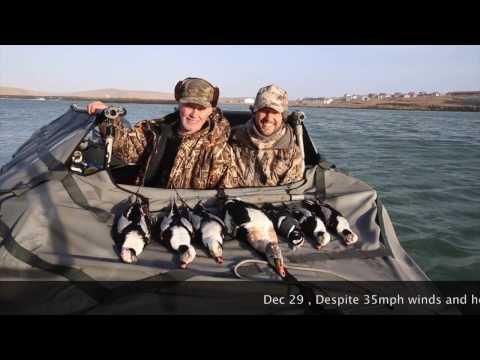 Sea duck hunting 2017 HD