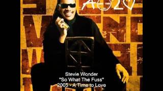 Stevie Wonder   So What The Fuss 360p