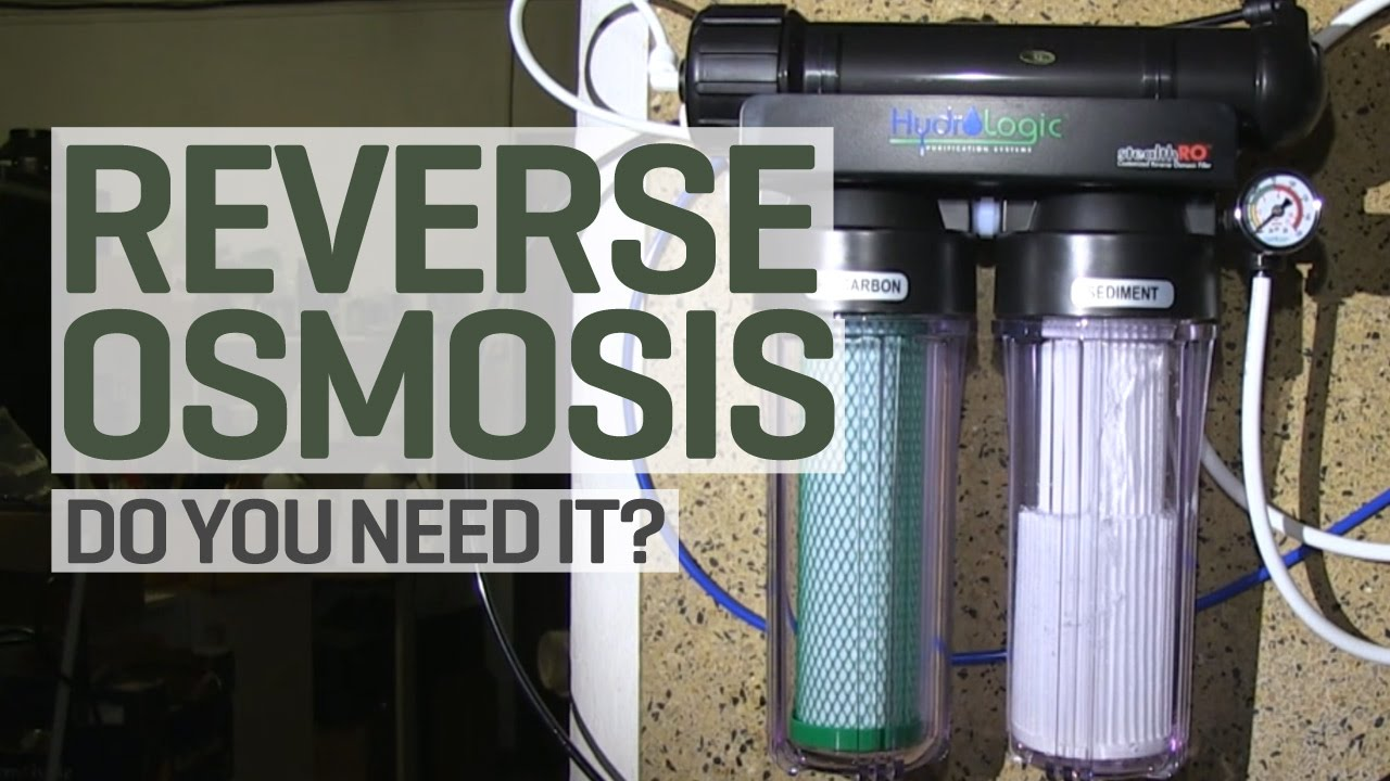 Is Reverse Osmosis Purified Water Really Necessary For