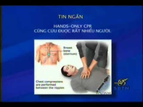 2010 oct 13 Tin Tuc Y Khoa Tong Quat -  BS Pham Dang Long Co phan 3