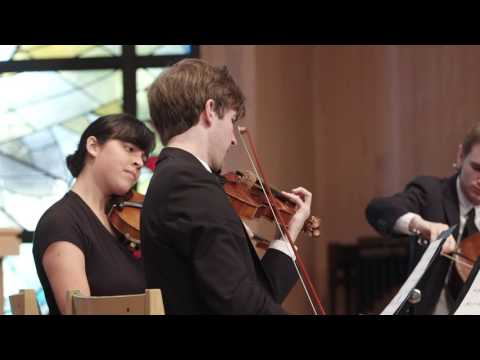 Julia Adolphe: Veil of Leaves •  Kaleidoscope Chamber Orchestra