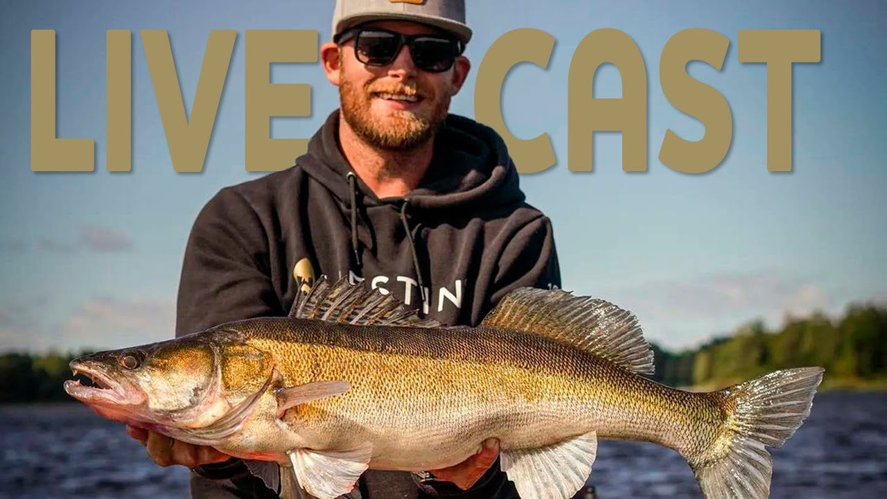 Download Live casting for zander - Fishing with livescope | Westin Fishing