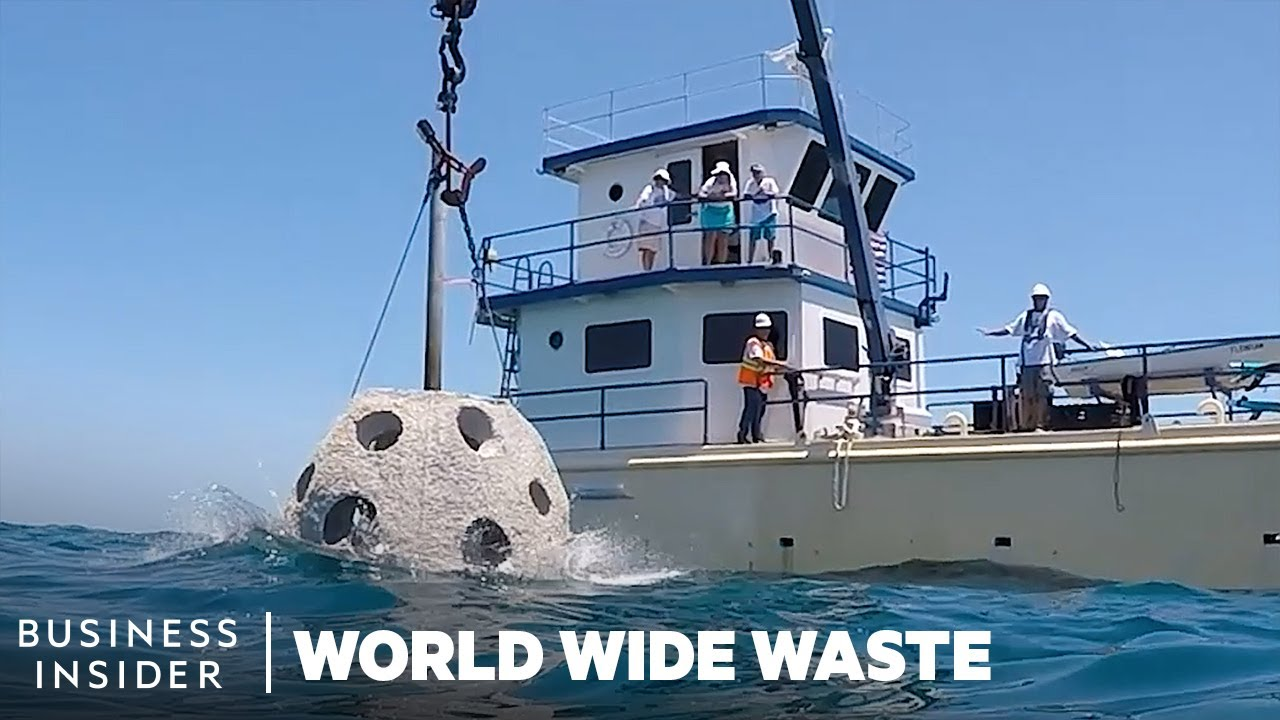 How Reefs Made With Human Remains Restore Florida's Coastline | World Wide Waste