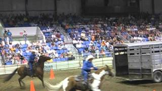 Rodeo Horse Racing from a Trailer
