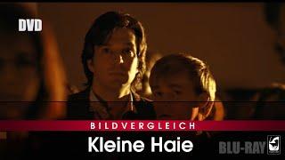 Kleine Haie - Jubiläums-Edition (Blu-ray- und  DVD-Trailer)