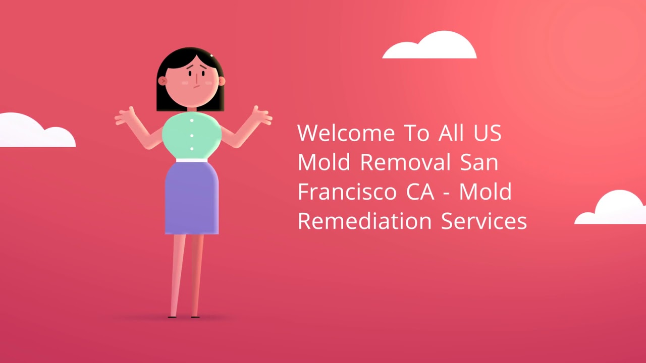Mold Removal Services in San Francisco, CA