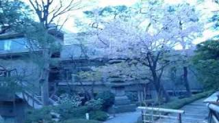Tokyo earthquake 9.0