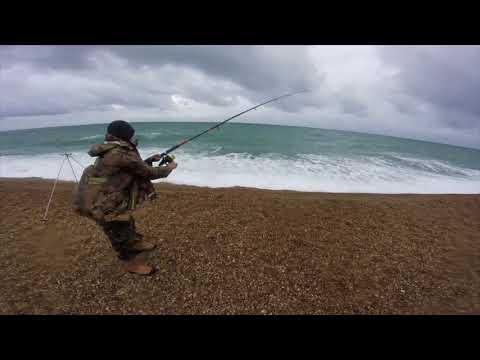 Chesil  Beach Fishing Bream Bonanza Sept/ Oct 2017