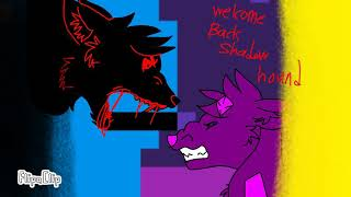 Welcome back my pet shadow hound