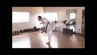 http://www.karatefan.co.jp/?pid=86715391 剛柔流空手道型・久場良男の...