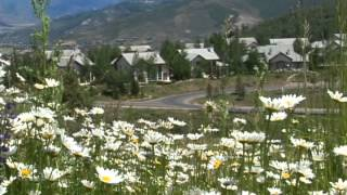 Colorado Flowers and houses