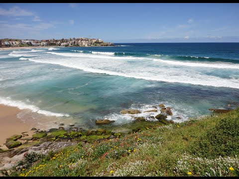 Visiting Bondi Beach, Beach in Sydney, New South Wales