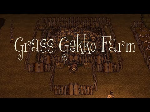 DST Tips: Creating a Grass Gekko Farm