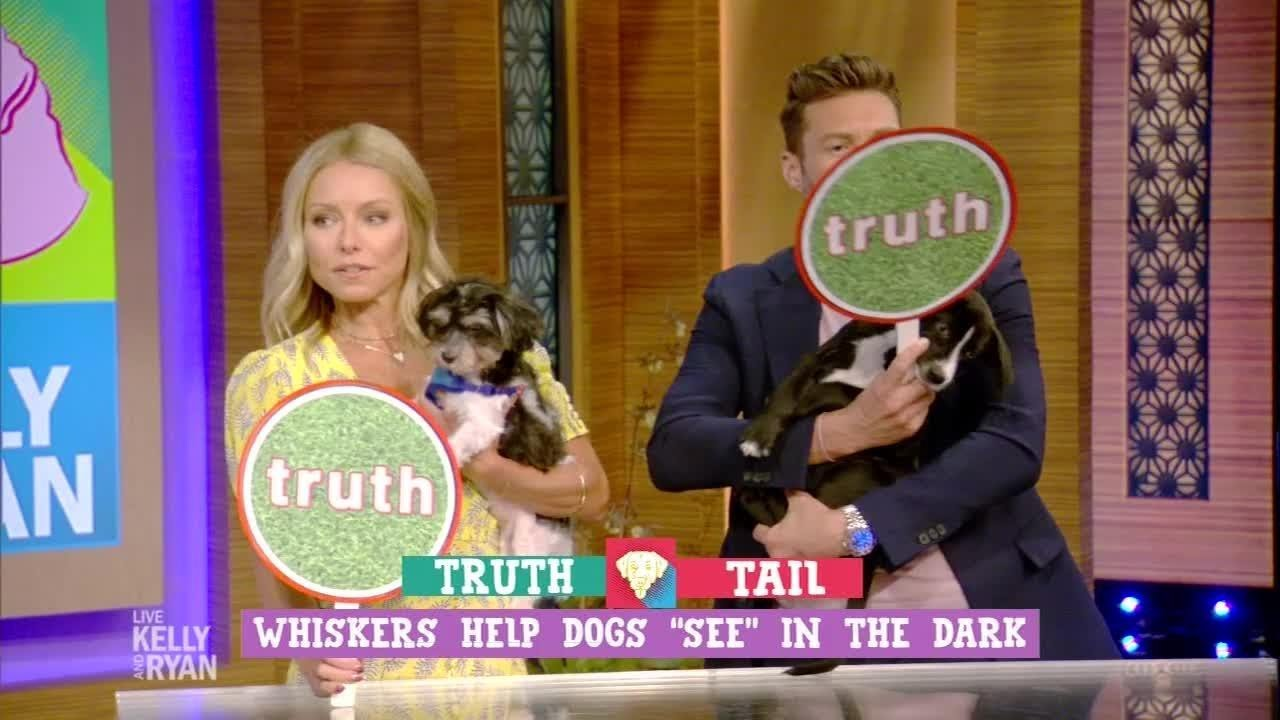 Truth or Tail with Bernadette Peters