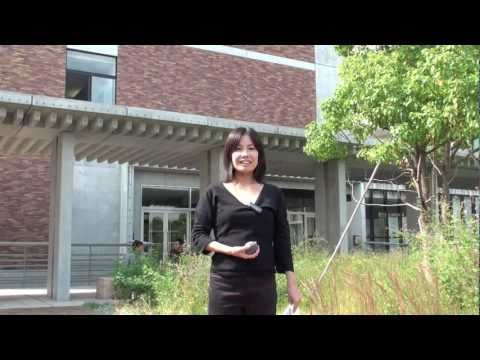 Kobayashi lab -小林潔司研究室 Kyoto University
