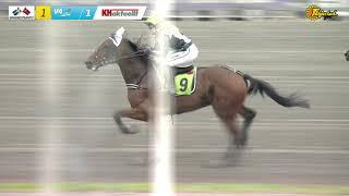 Vidéo de la course PMU PRIX KHAKTUELLT - MONTEKAMPEN