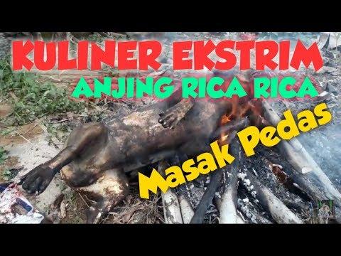 KULINER EKSTRIM | RICA RICA DAGING ANJING /  MASAK RW