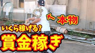 【危険バイト】沖縄で猛毒のハブを捕まえたら多額の賞金が貰えるので捕まえに行ってみた。<前編>in沖縄