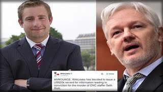 seth rich killed dnc staffer emailed wikileaks