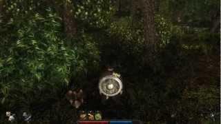 Risen gameplay