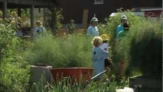 Brown School Community Service Day   Washington University