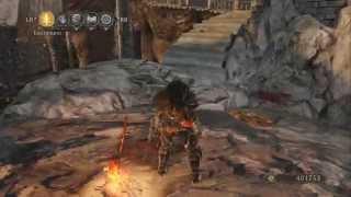 Dark Souls 2 - Toxic Predator Dexterity PvE Build
