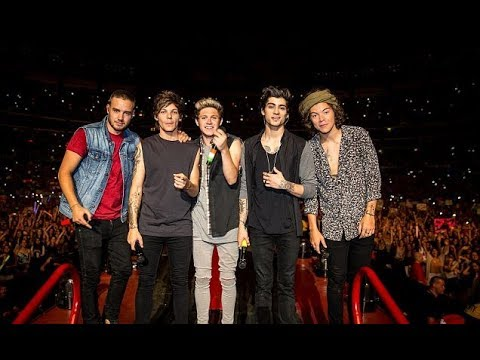 You & I - One Direction Where We Are 2014 at San Siro