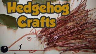 Hedgehog Craft - Diy hedgehog house - Garden Crafts - natural crafts - kid craft ideas - easy crafts