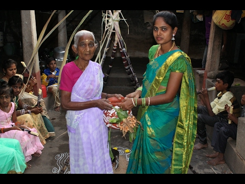 Early morning celebrate pongal festival at home /My Village My Food