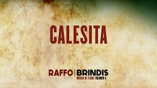 raffo, calesita (360°), brindis/música de flores vol. 4