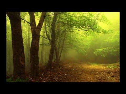 Steve Hackett - Spectral Mornings (full album)