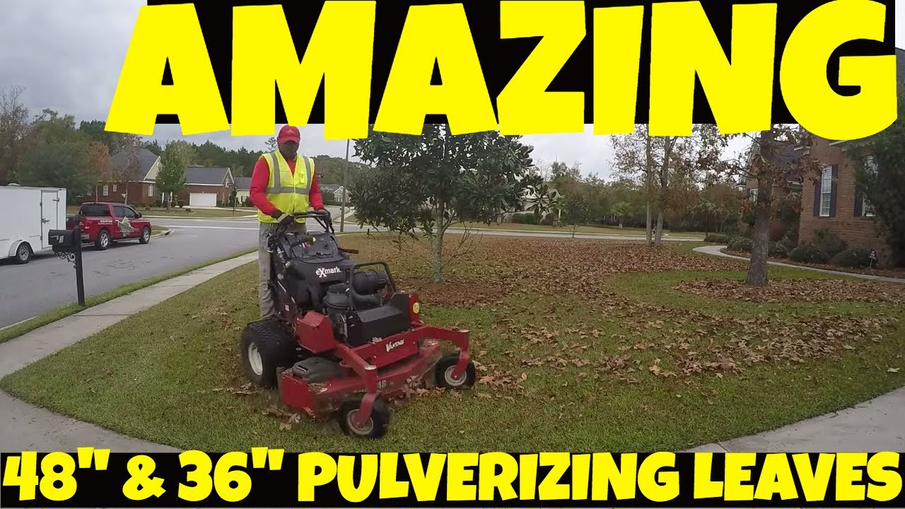 Exmark Vantage 48` and 36` mulching leafs by Blades of Grass Lawn in Care  Savannah, GA (912)507-1978
