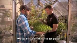 Urban Food Farms as seen on TV!