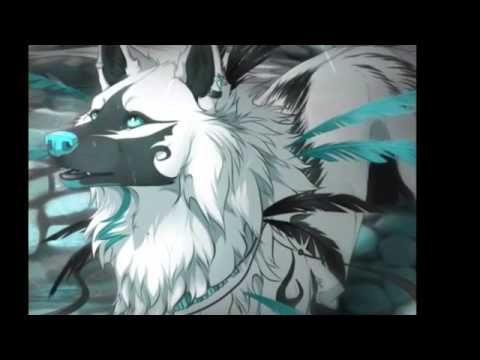 Chasing The Sun ~Anime Wolves