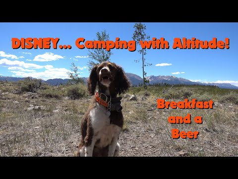 Disney... Camping with Altitude, Breakfast, and a Beer