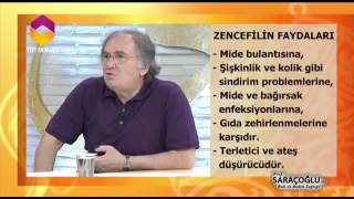 zencefil-kr-trt-dyanet