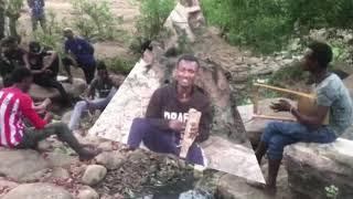 New Eritrean Kirar music