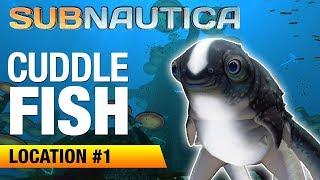 cuddlefish-egg-location-1-subnautica