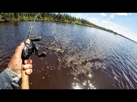 Tackle For BIG Canadian Pike