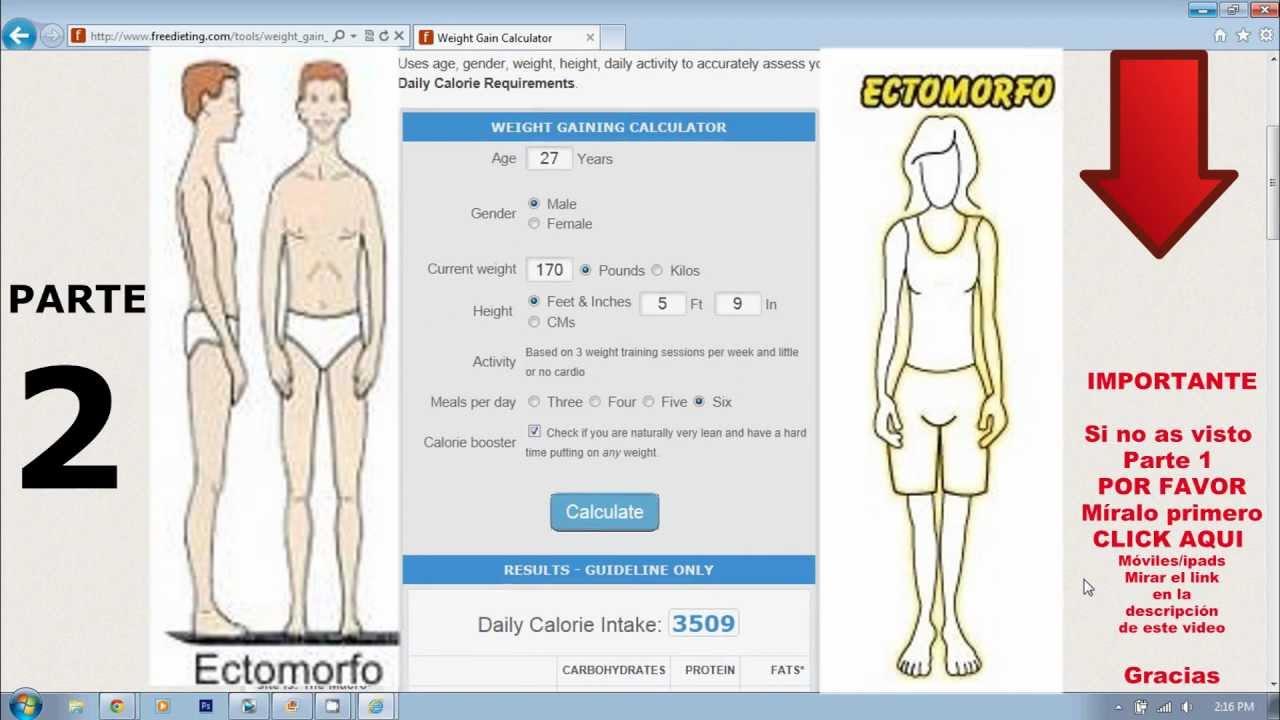 dieta ganar masa muscular ectomorfo