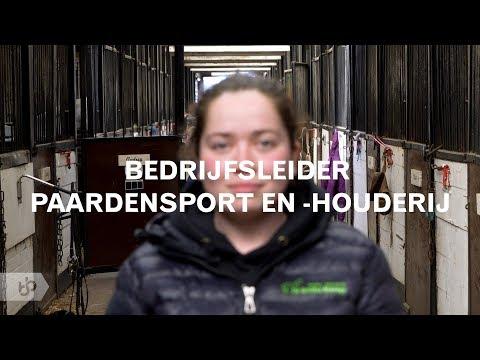 Praktijkleren: Bedrijfsleider paardensport en -houderij
