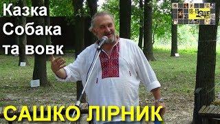 САШКО ЛІРНИК • Казка Собака та вовк / Фестиваль Ше.Fest • Моринці // 2018