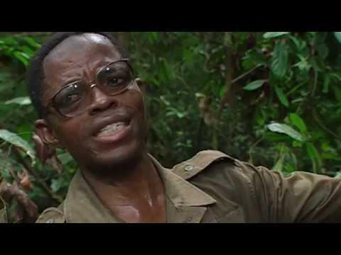 Le souffle de la forêt - tourné en 1997 /98 - Film de JC Cheyssial