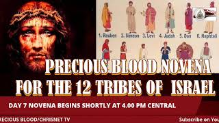 PRECIOUS BLOOD: July Novena For The 12 Tribes Of Israel- 7
