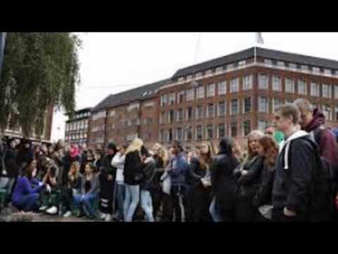 Niels Brock Copenhagen Business College Denmark