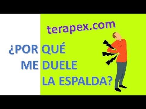 DOLOR DE ESPALDA - ¿Por qué