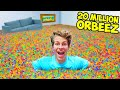 FILLING MY ENTIRE HOUSE WITH 20 MILLION ORBEEZ!