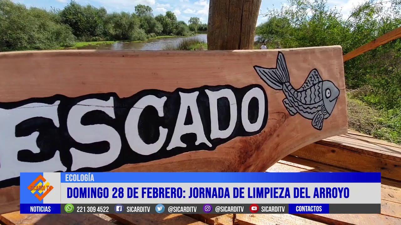 """Limpieza del Arroyo """"El Pescado"""""""