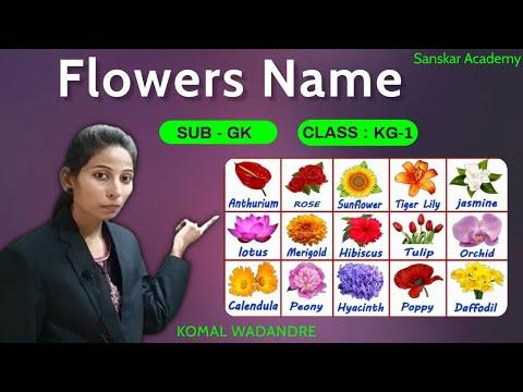 Flowers Name   SUB - GK   Class KG-1   Sanskar Academy